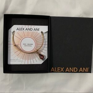 Alex and Ani Red Magma Crystal